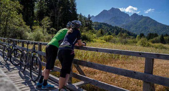 bike slovenia green