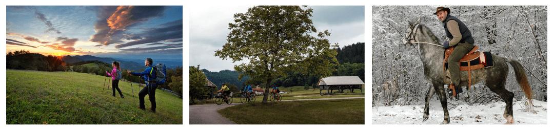 Sevnica tours